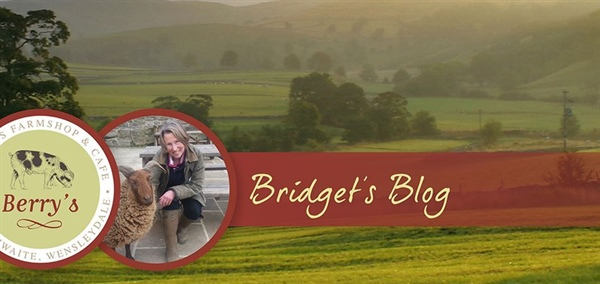 Bridget's April Blog