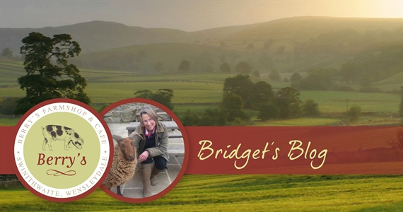 Bridget's March Blog